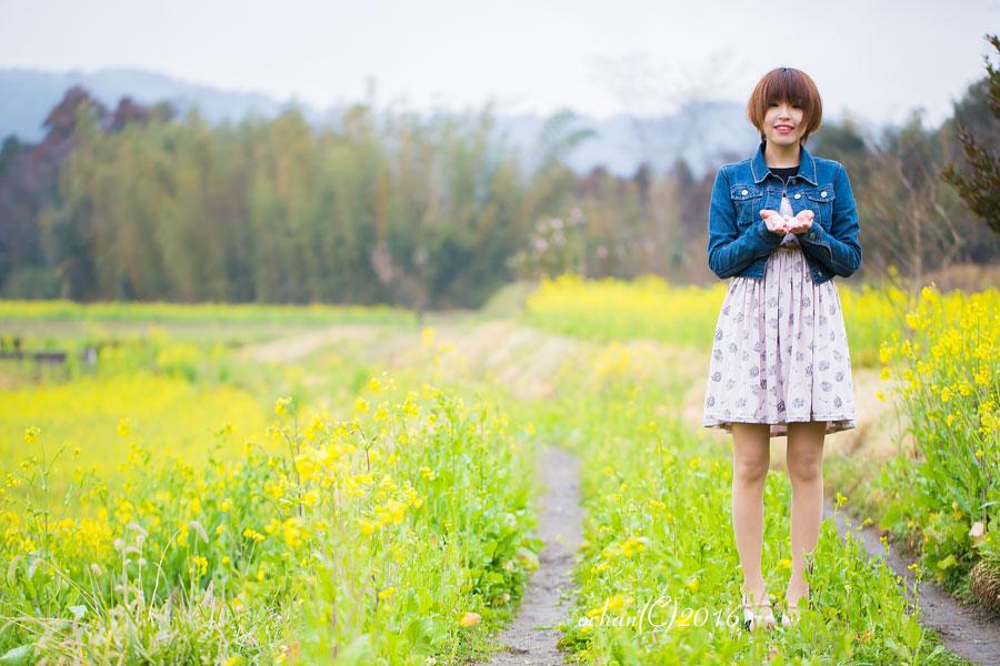 早咲きの椿 / 星野くるみ